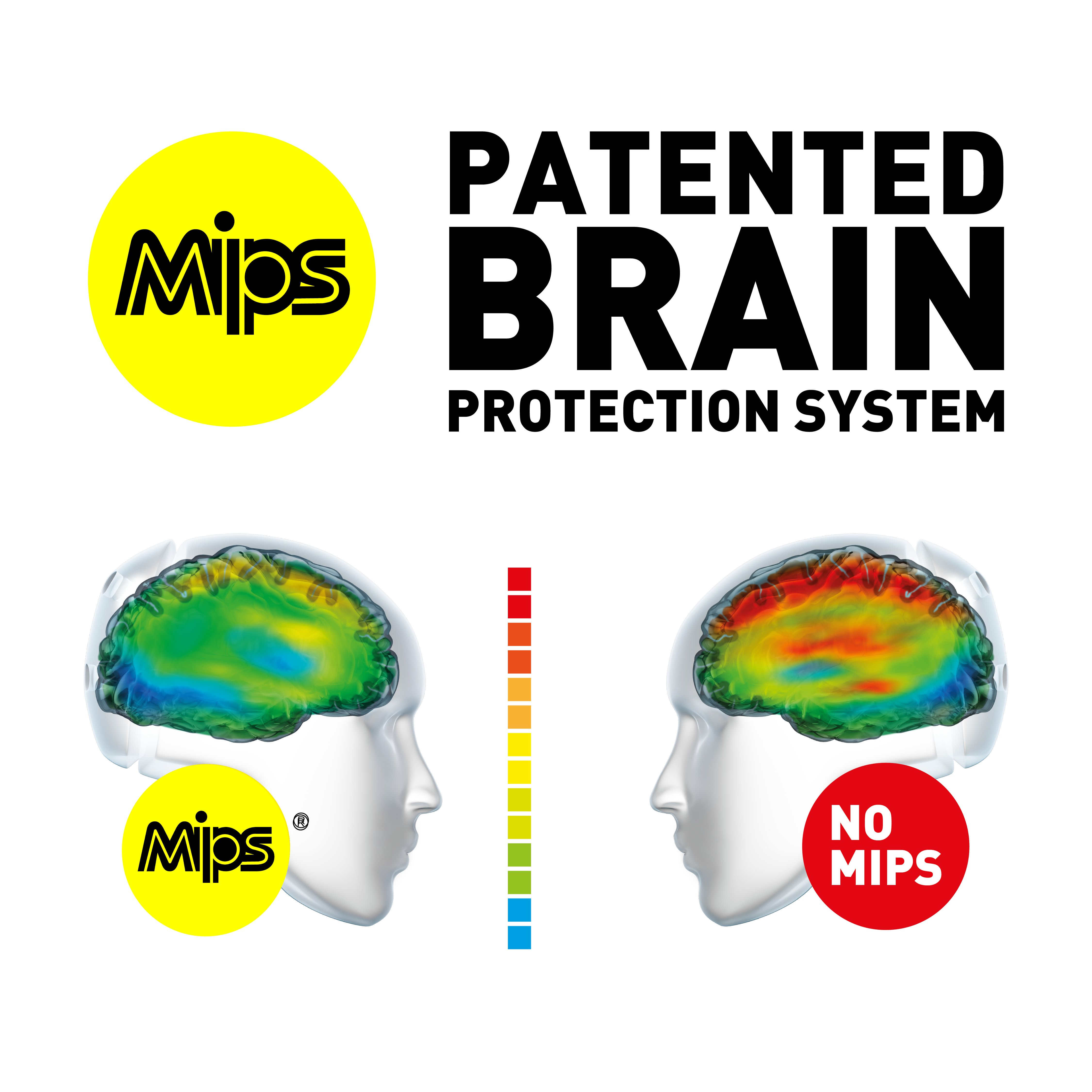 patented brain protection system